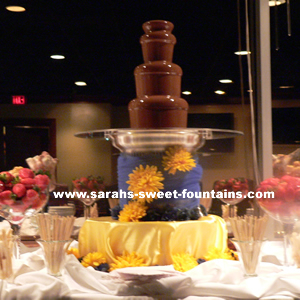 Sephra Cortez Commercial Chocolate Fountain